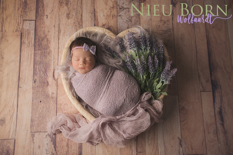 Nieu Photography_Newborn Wolfaardt_032